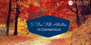 5 Fun Fall Activities in Connecticut