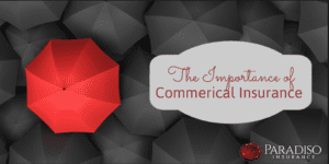 The Importance of Commercial Insurance